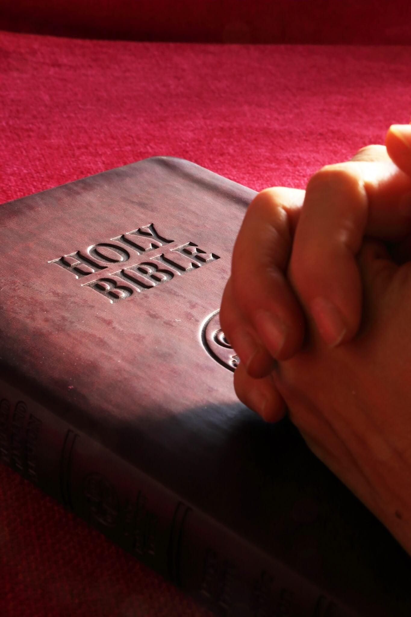 Contemplar o Deus misericordioso