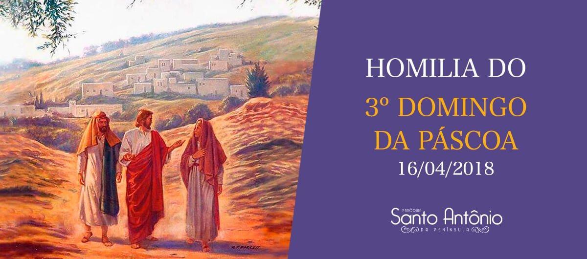 Homilia do 3º Domingo da Páscoa - Pe. Marciano