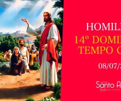 homilia do 14º domingo comum