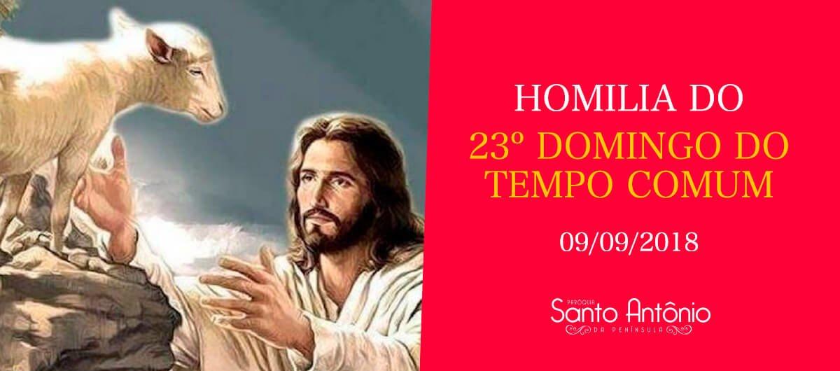 Homilia do 23º Domingo Comum - Pe. Marciano